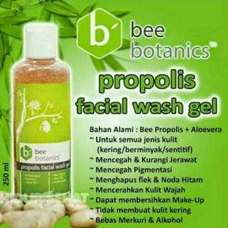 HDI bee botanics facial