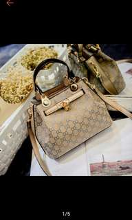 Gucci Sling and Hand Bag