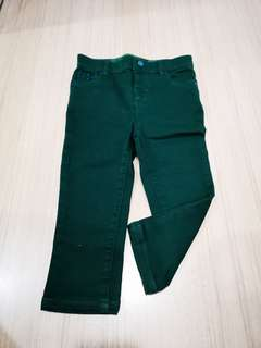 Burberry Green Pants