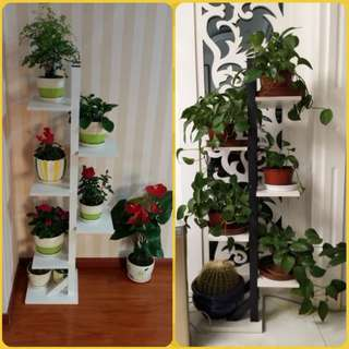 Plant Display Stand - multi layer double side