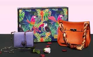 Branding: Big Giftbox 463mm