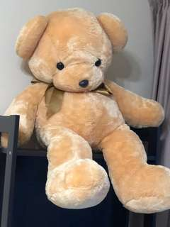 New Terry Bear Soft Toy