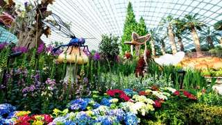 Gardens by the Bay (Flower Dome+Cloud Forest)