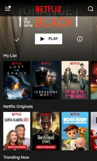 Netflix for rent (monthly)