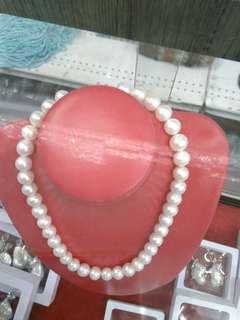 Fresh water pearl choker
