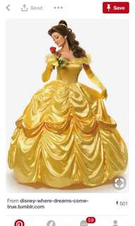 Belle Gown For Adult For Rent