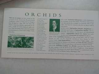 Vintage Royal Mail Cardboard Print Orchids
