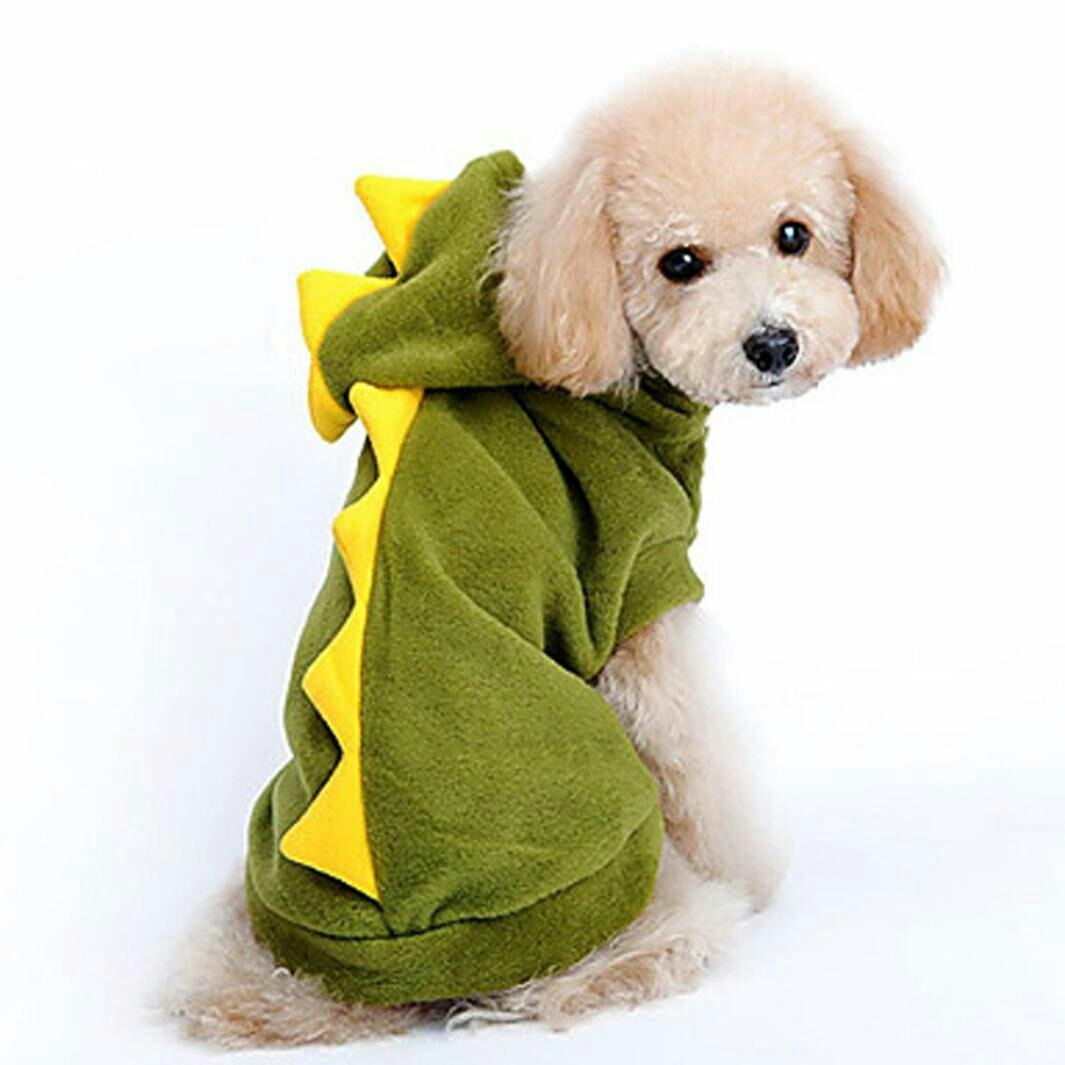 photo photo ...  sc 1 st  Carousell & Dinosaur Costume Suit Pet Cat Dog puppy kitten M size Pet Supplies ...
