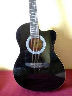 RUSH RUSH RUSH! Steven Harris Acoustic Guitar