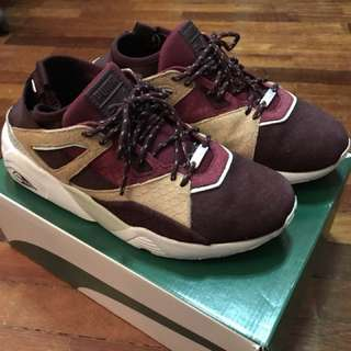 Puma BOG Sock Rioja US9 UK8