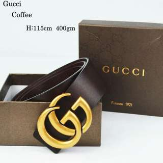Gucci GG Belt Coffee Color