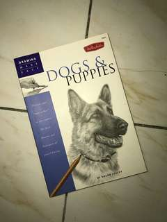 Dogs and Puppies by Nolon Stacey (Drawing Book)