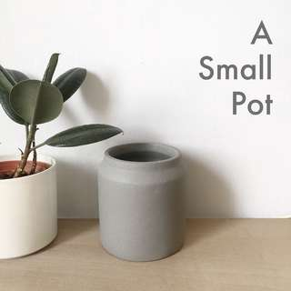 Grow a Plant, but get a lovely concrete pot first!