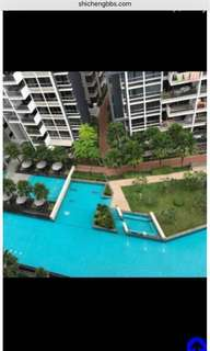 Pasir Ris Condo common room for rent