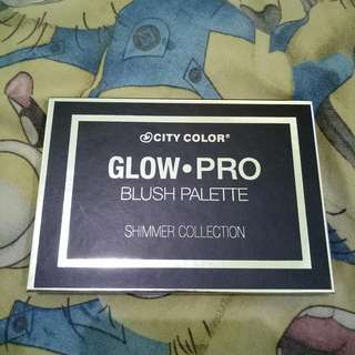 NEW City Color Glow Pro Blush palette NO NEGO