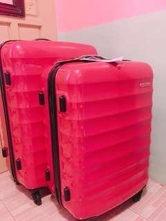 Para-Lite Spinner 66/24 Hot Pink (Medium) BRAND NEW