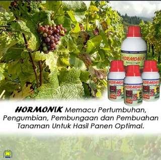Hormonik (Pupuk untuk buah)