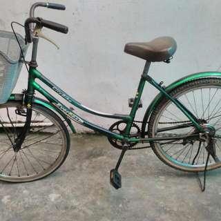 Jual Sepeda Mini Merk Everbeast