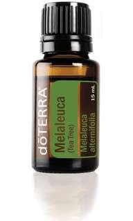 doTERRA Tea Tree Oil or Melaleuca Essential Oil