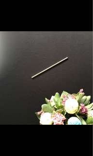 Reusable Straw (Stainless Steel)