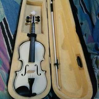 Violin Instrument