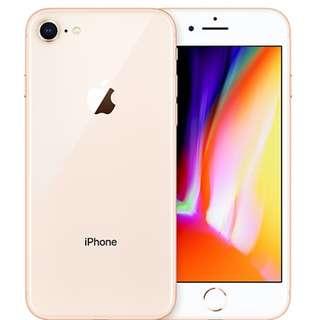 iphone8 plus Gold 購自FORTRESS