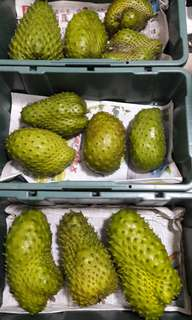 ORGANIC FRESH SOURSOP FRUIT