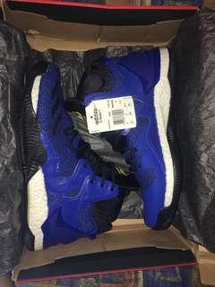 Brand New Legit D Rose 7 Blue