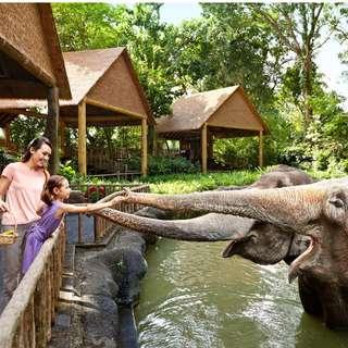 Singapore Zoo E-Ticket