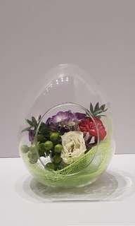 Free D pot flower