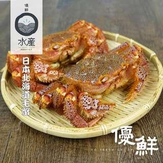 日本北海道活毛蟹(500g-600g)