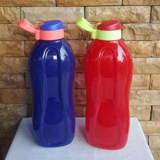 Eco bottle 2L with handle