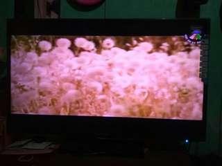 """Tv lcd """"42"""" polytron"""