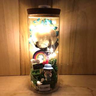 LATEST! Mother's Day/ Mum's Day/ Anniversary/ Valentine's Day/ Christmas/ Birthday/ Congrats/ Farewell/ House warming- Dried Flowers Cotton Flower Fairy Light Glass Jar
