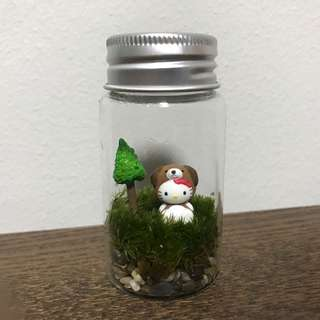 Sanrio Hello Kitty Holland Moss Terrarium