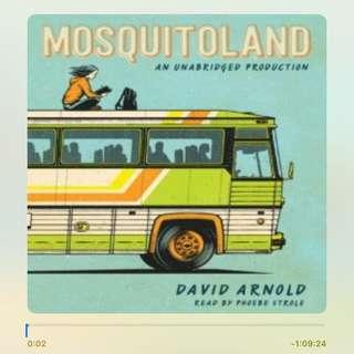 Mosquitoland Audiobook