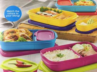 Tupperware Foodie Buddy (1) Random Color