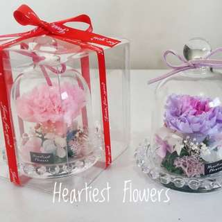 Mother's day special • preserved carnation in little jar