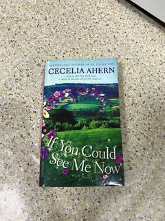 Cecilia Ahern: If You Could See Me Now