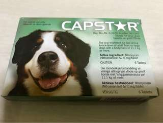 Capstar - Oral Treatment for fleas for Large Dogs