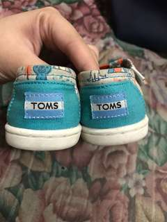 Toms Todder Shoes
