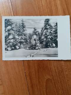 Nazi Era Christmas Postcard