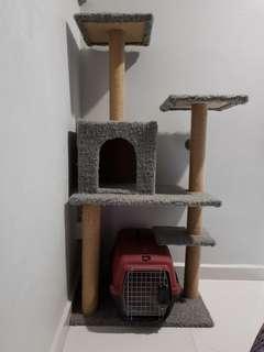 Cats condo