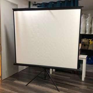 Portable Indoor Outdoor Projector Screen