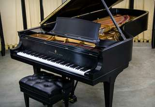 We accept piano tuning and repair