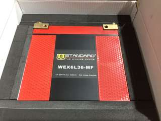 W Standard Lithium IRON Battery