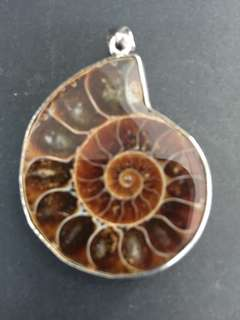 Fossil Shell Ammonite Healing Stone Pendant Framed With Silver Frame
