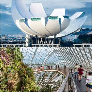 COMBO: Gardens by the Bay + Art Science Museum