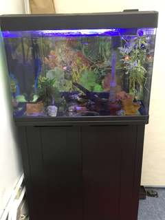 AA魚缸26寸