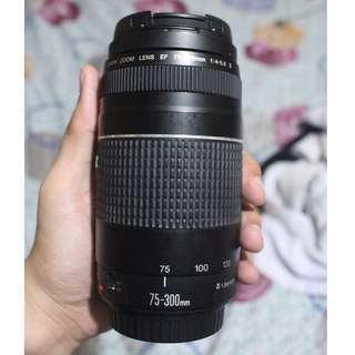 Canon EF 75-300mm f/4-5.6 III Lens (Canon zoom lens)